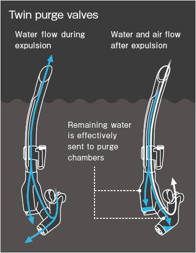 Twin purge valves